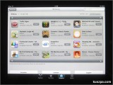 German iPad Apps for Learning Report 2010.06