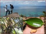 Seychelles, Praslin, nature trail